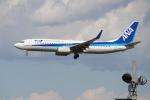 OMAさんが、成田国際空港で撮影した全日空 737-881の航空フォト(写真)