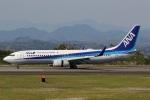 camelliaさんが、静岡空港で撮影した全日空 737-881の航空フォト(写真)
