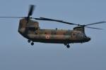 たっしーさんが、熊本空港で撮影した陸上自衛隊 CH-47JAの航空フォト(写真)