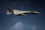 こびとさんさんが、入間飛行場で撮影した航空自衛隊 F-15J Eagleの航空フォト(写真)