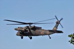 もぐ3さんが、新発田駐屯地で撮影した陸上自衛隊 UH-60JAの航空フォト(飛行機 写真・画像)