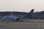 リンリンさんが、成田国際空港で撮影したタイ国際航空 A380-841の航空フォト(写真)