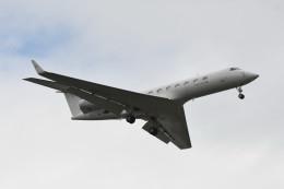 kuro2059さんが、台北松山空港で撮影した金鹿航空 G-V-SP Gulfstream G550の航空フォト(写真)