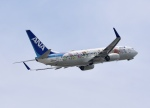 しんちゃん007さんが、岩国空港で撮影した全日空 737-881の航空フォト(写真)