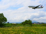 MASACHANさんが、宮崎空港で撮影したジェイ・エア ERJ-170-100 (ERJ-170STD)の航空フォト(写真)