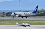 Dojalanaさんが、函館空港で撮影した日本法人所有 A36AT Bonanza 36の航空フォト(飛行機 写真・画像)