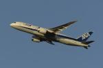 Y.Kさんが、成田国際空港で撮影した全日空 787-8 Dreamlinerの航空フォト(写真)