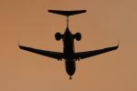 キイロイトリさんが、伊丹空港で撮影したアイベックスエアラインズ CL-600-2C10 Regional Jet CRJ-702ERの航空フォト(写真)