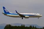 Kuuさんが、鹿児島空港で撮影した全日空 737-881の航空フォト(写真)