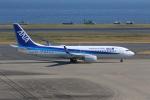 MA~RUさんが、羽田空港で撮影した全日空 737-8ALの航空フォト(写真)