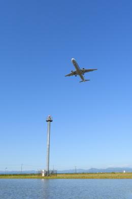 Dreamer-K'さんが、庄内空港で撮影した全日空 A321-211の航空フォト(飛行機 写真・画像)