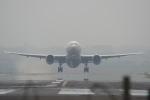 JA8037さんが、台北松山空港で撮影した日本航空 777-246/ERの航空フォト(写真)