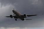 nob24kenさんが、千歳基地で撮影した航空自衛隊 777-3SB/ERの航空フォト(写真)