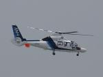 CR51ANさんが、神戸空港で撮影したオールニッポンヘリコプター AS365N3 Dauphin 2の航空フォト(写真)