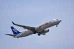ひこ☆さんが、岩国空港で撮影した全日空 737-881の航空フォト(写真)