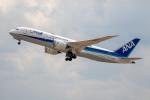 チャッピー・シミズさんが、小松空港で撮影した全日空 787-8 Dreamlinerの航空フォト(写真)