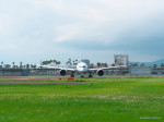 MASACHANさんが、宮崎空港で撮影した全日空 787-8 Dreamlinerの航空フォト(写真)