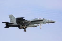 kazuchiyanさんが、岩国空港で撮影したアメリカ海軍 F/A-18F Super Hornetの航空フォト(飛行機 写真・画像)
