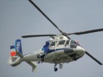 commet7575さんが、福岡空港で撮影したオールニッポンヘリコプター AS365N2 Dauphin 2の航空フォト(写真)