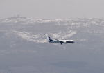 GOQさんが、函館空港で撮影した全日空 787-8 Dreamlinerの航空フォト(写真)