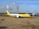 atiiさんが、ドンムアン空港で撮影したスクート (〜2017) 787-9の航空フォト(写真)
