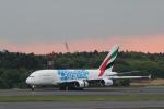 ツンさんが、成田国際空港で撮影したエミレーツ航空 A380-861の航空フォト(写真)