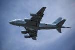 MiYABiさんが、徳島空港で撮影した海上自衛隊 P-1の航空フォト(写真)