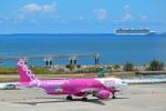 fukusukeさんが、那覇空港で撮影したピーチ A320-214の航空フォト(写真)