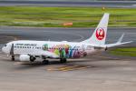 KAMIYA JASDFさんが、羽田空港で撮影した日本航空 737-846の航空フォト(写真)