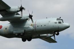 382kossyさんが、厚木飛行場で撮影した海上自衛隊 C-130Rの航空フォト(飛行機 写真・画像)