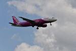 yotaさんが、成田国際空港で撮影したピーチ A320-214の航空フォト(写真)