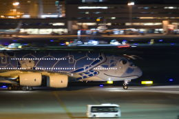Parsleyさんが、羽田空港で撮影した全日空 A380-841の航空フォト(飛行機 写真・画像)
