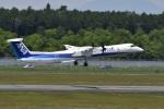 たっしーさんが、熊本空港で撮影したANAウイングス DHC-8-402Q Dash 8の航空フォト(写真)