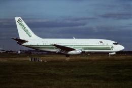 tassさんが、ロンドン・ガトウィック空港で撮影したトランサヴィア 737-2K2/Advの航空フォト(飛行機 写真・画像)