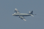 NFファンさんが、厚木飛行場で撮影した海上自衛隊 P-3Cの航空フォト(写真)