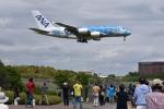 厦龙さんが、成田国際空港で撮影した全日空 A380-841の航空フォト(写真)