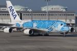 つみネコ♯2さんが、関西国際空港で撮影した全日空 A380-841の航空フォト(写真)