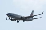 kuro2059さんが、台湾桃園国際空港で撮影したチャイナエアライン 737-8ALの航空フォト(写真)