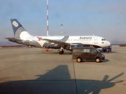 atiiさんが、ウラジオストク空港で撮影したオーロラ A319-111の航空フォト(飛行機 写真・画像)