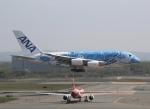 とむくんさんが、新千歳空港で撮影した全日空 A380-841の航空フォト(写真)