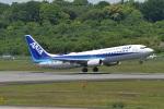 たっしーさんが、熊本空港で撮影した全日空 737-881の航空フォト(写真)