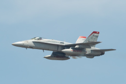 shingenさんが、岩国空港で撮影したアメリカ海兵隊 F/A-18C Hornetの航空フォト(飛行機 写真・画像)