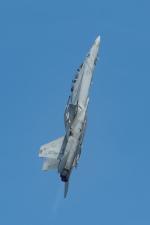 shingenさんが、岩国空港で撮影したアメリカ海軍 F/A-18F Super Hornetの航空フォト(写真)
