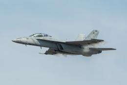 shingenさんが、岩国空港で撮影したアメリカ海軍 F/A-18F Super Hornetの航空フォト(飛行機 写真・画像)