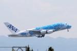 青春の1ページさんが、関西国際空港で撮影した全日空 A380-841の航空フォト(写真)