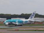 空港快速さんが、成田国際空港で撮影した全日空 A380-841の航空フォト(写真)