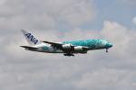 yotaさんが、成田国際空港で撮影した全日空 A380-841の航空フォト(写真)