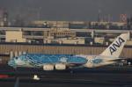 VIPERさんが、羽田空港で撮影した全日空 A380-841の航空フォト(写真)