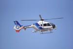 kumagorouさんが、仙台空港で撮影したオールニッポンヘリコプター EC135T2の航空フォト(写真)