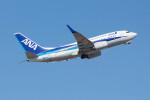 Koenig117さんが、関西国際空港で撮影した全日空 737-781の航空フォト(写真)